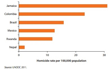 Homicide rates in case study countries